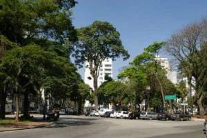 Ciclistas comemoram decisão da Justiça favorável a ciclovias em São Paulo