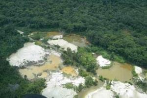Amazônia acumula 762 mil km² de desmatamento em 40 anos