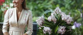 Kate Middleton está grávida de gêmeos, diz revista