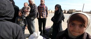 Extermínios em massa na Síria são crimes contra a humanidade, diz ONU
