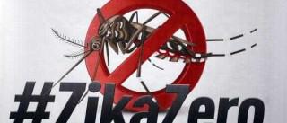 País terá neste sábado Dia de Mobilização para Combate ao Aedes aegypti