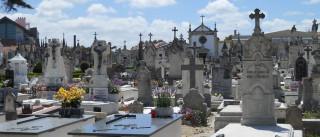 Homem desenterra cadáver da mãe de cemitério e acaba preso