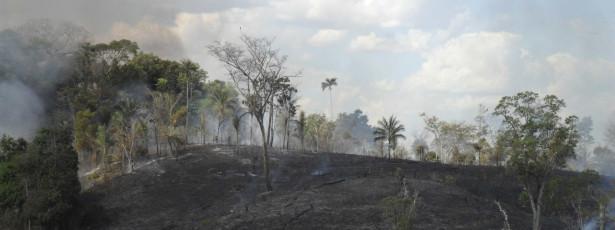 Incêndio atinge maior reserva florestal do Rio