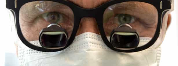 França registra quatro casos de febre chikungunya
