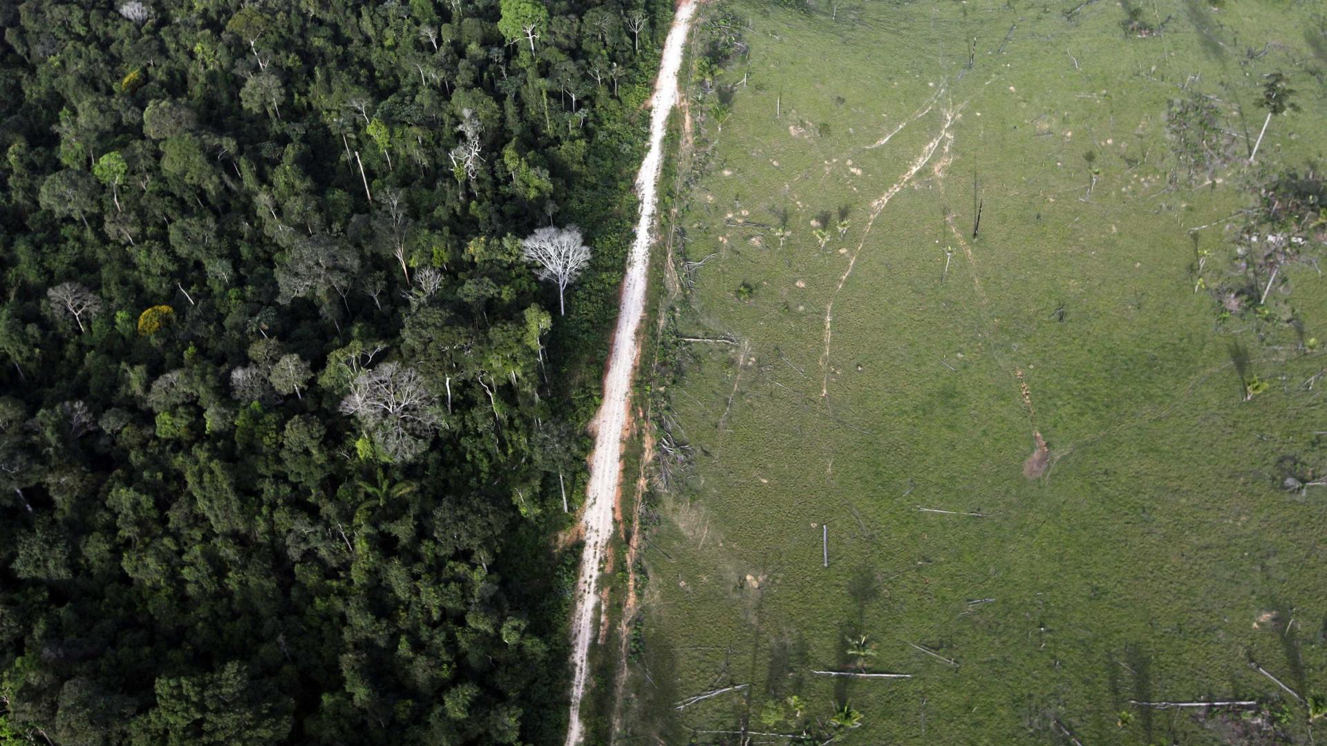 Retrocesso ambiental no Brasil pode custar R$ 20 tri ao resto do mundo