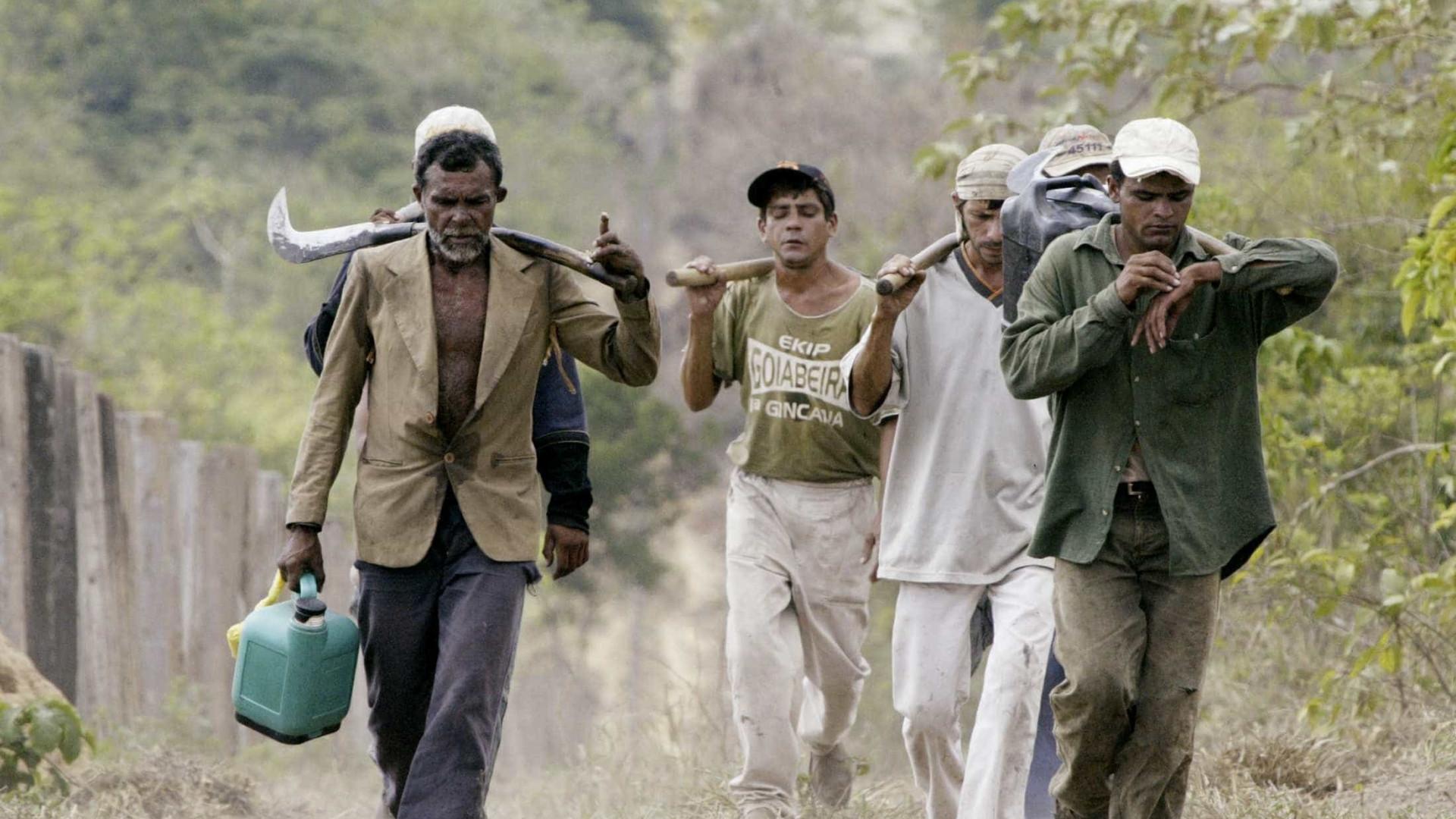 Brasil avança no combate ao trabalho escravo