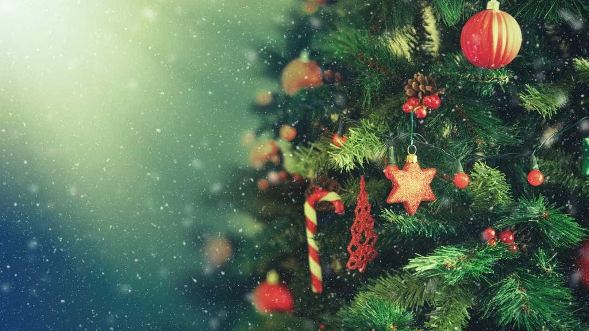 Qual a data certa de montar e  desmontar a árvore de Natal?