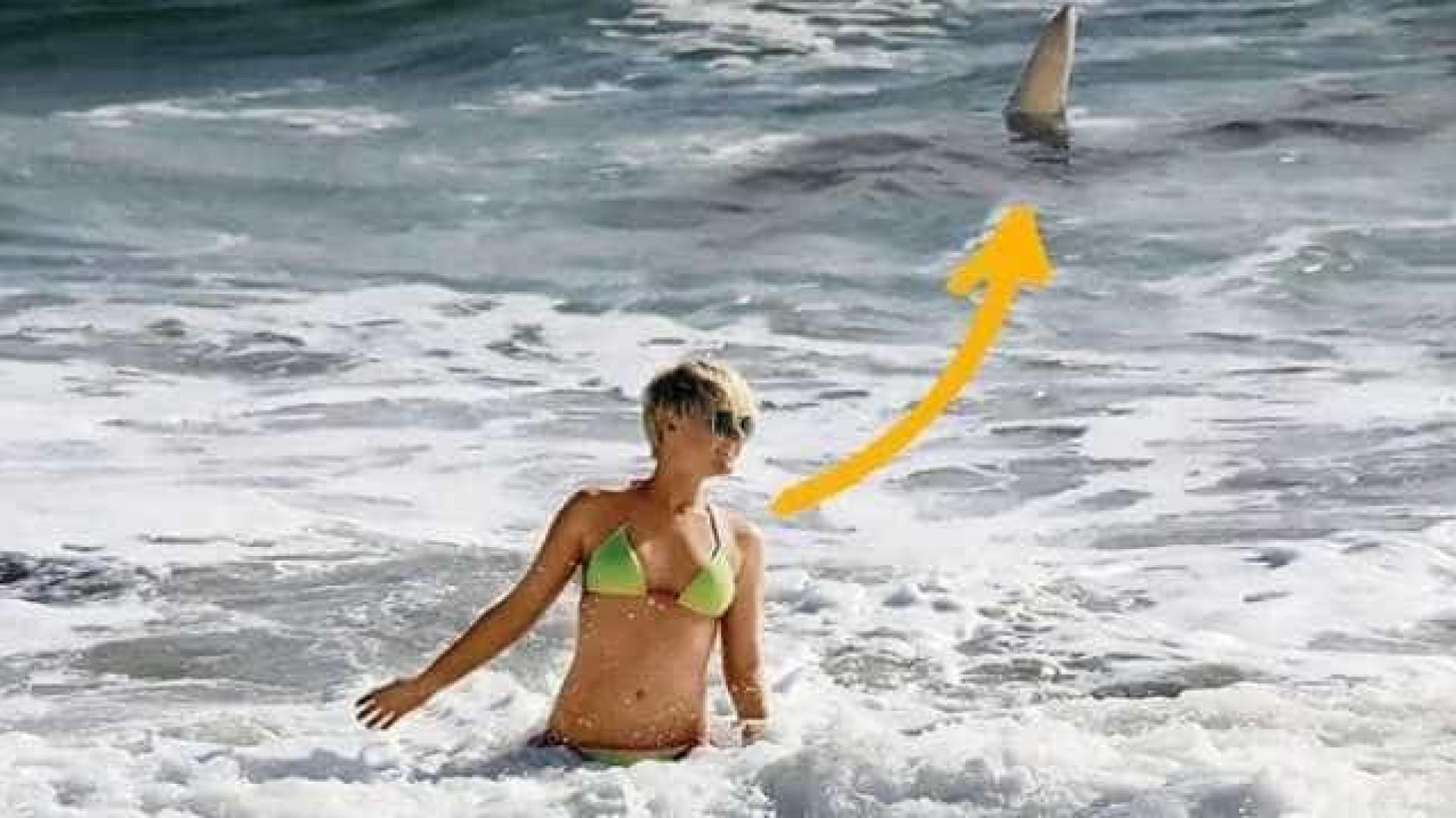 Atriz confunde alerta de tubarão com assédio de fã e se salva por pouco