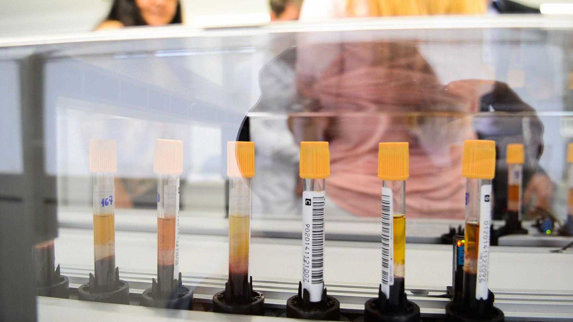 Secretaria: febre amarela matou 13 e infectou 29 em SP em um ano