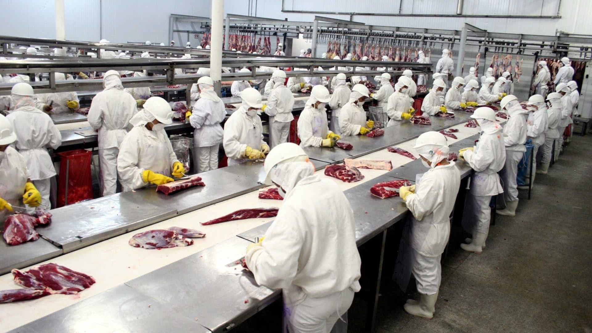 Veterinário diz que substância para preservar carne não produz câncer
