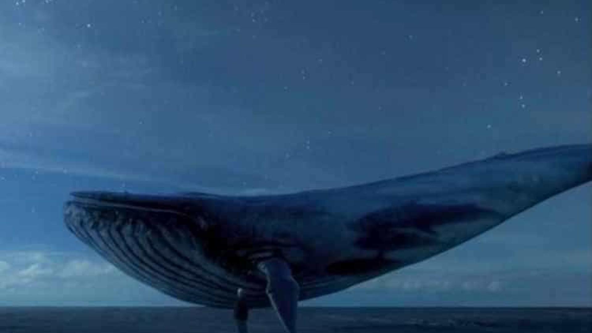 Curadores do 'jogo da baleia azul' podem ser indiciados por homicídio