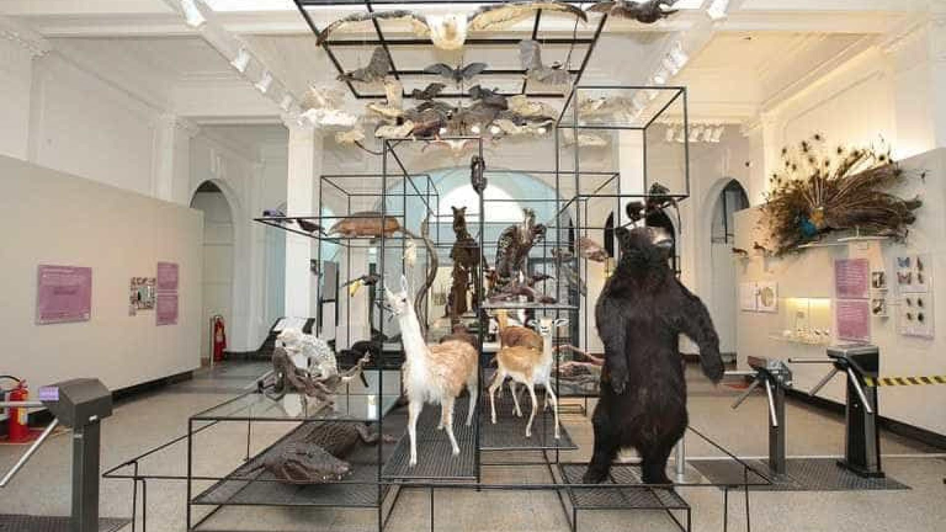 Veja a programação da 15ª Semana de Museus