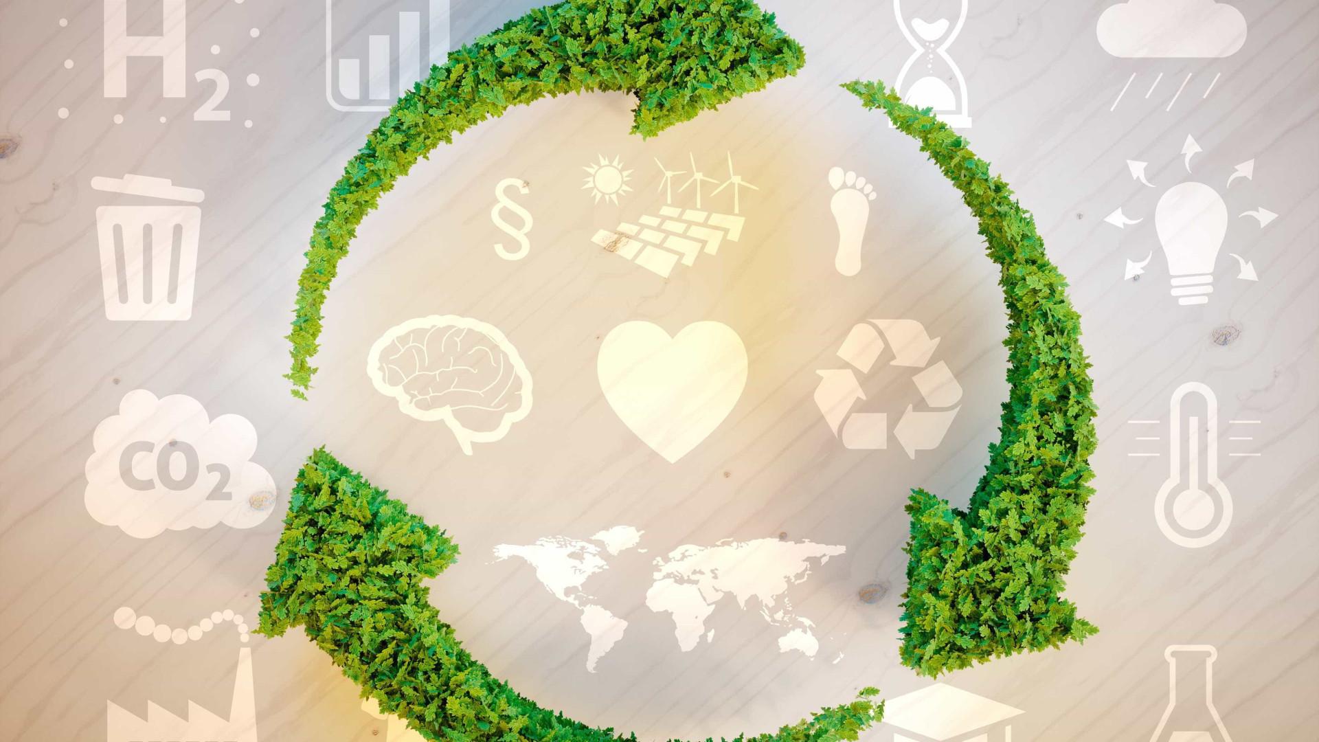 Consumo consciente ajuda preservação da natureza e gera empregos