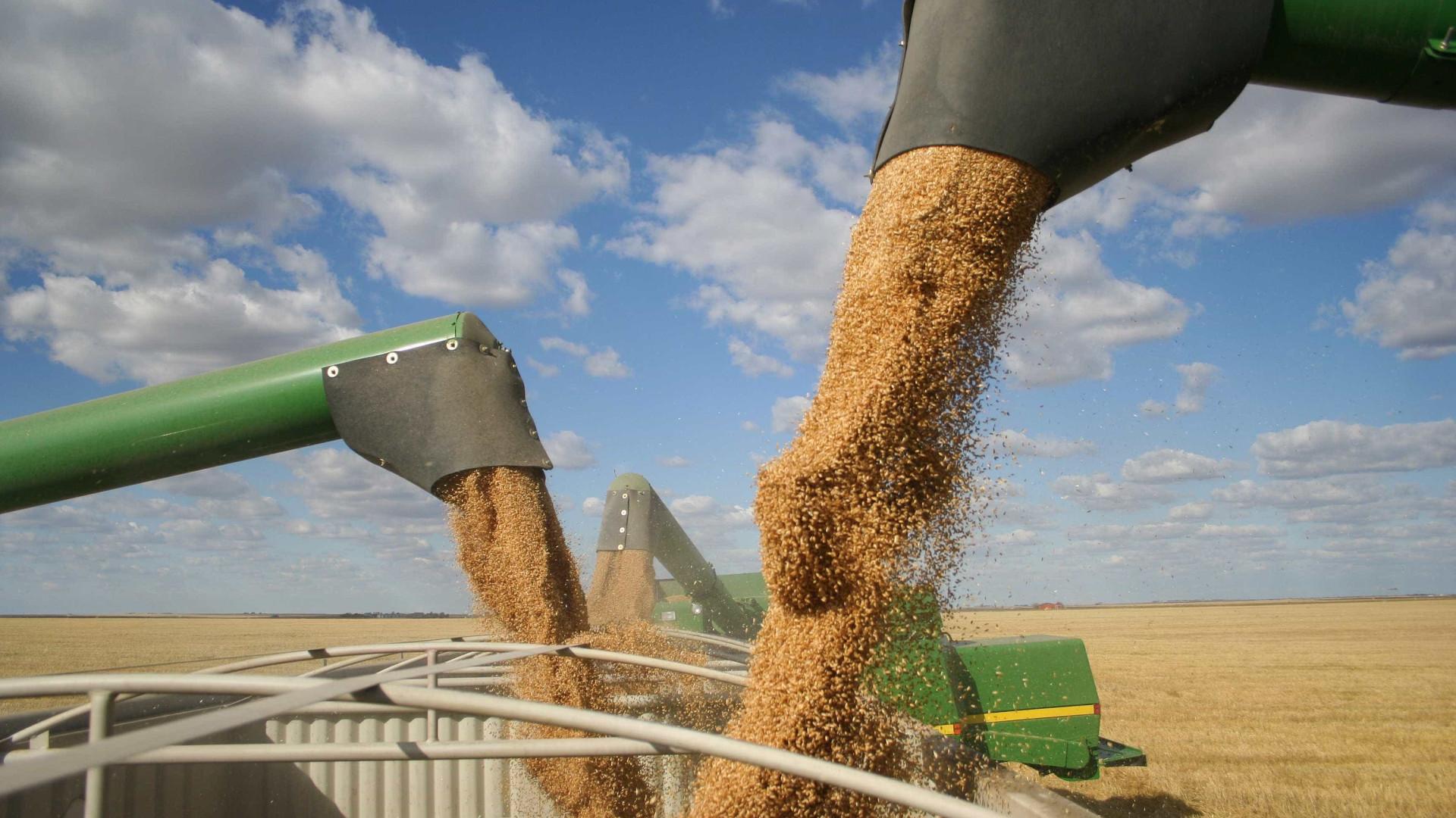 Agronegócio foi responsável por 36,3% das exportações brasileira