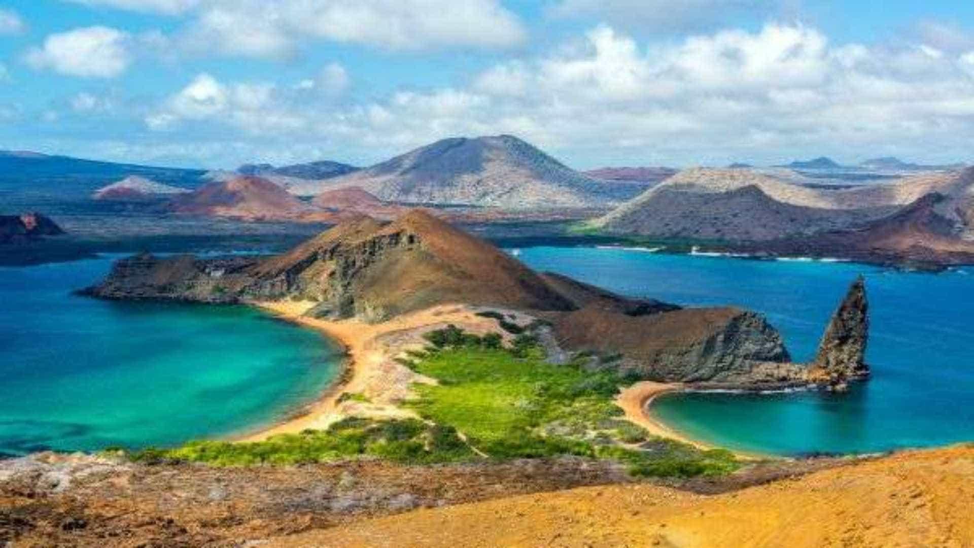 Galápagos: a fauna exuberante do arquipélago eternizado por Darwin