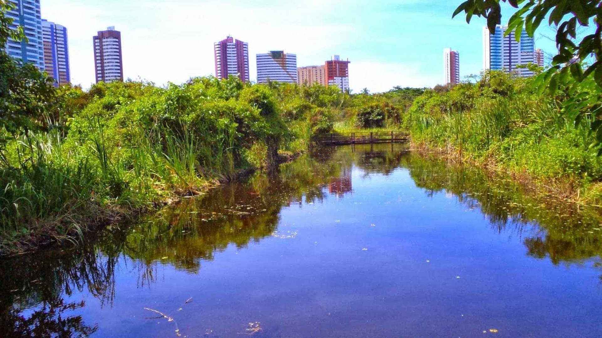 Abraço simbólico alerta para ameaça ambiental em Fortaleza