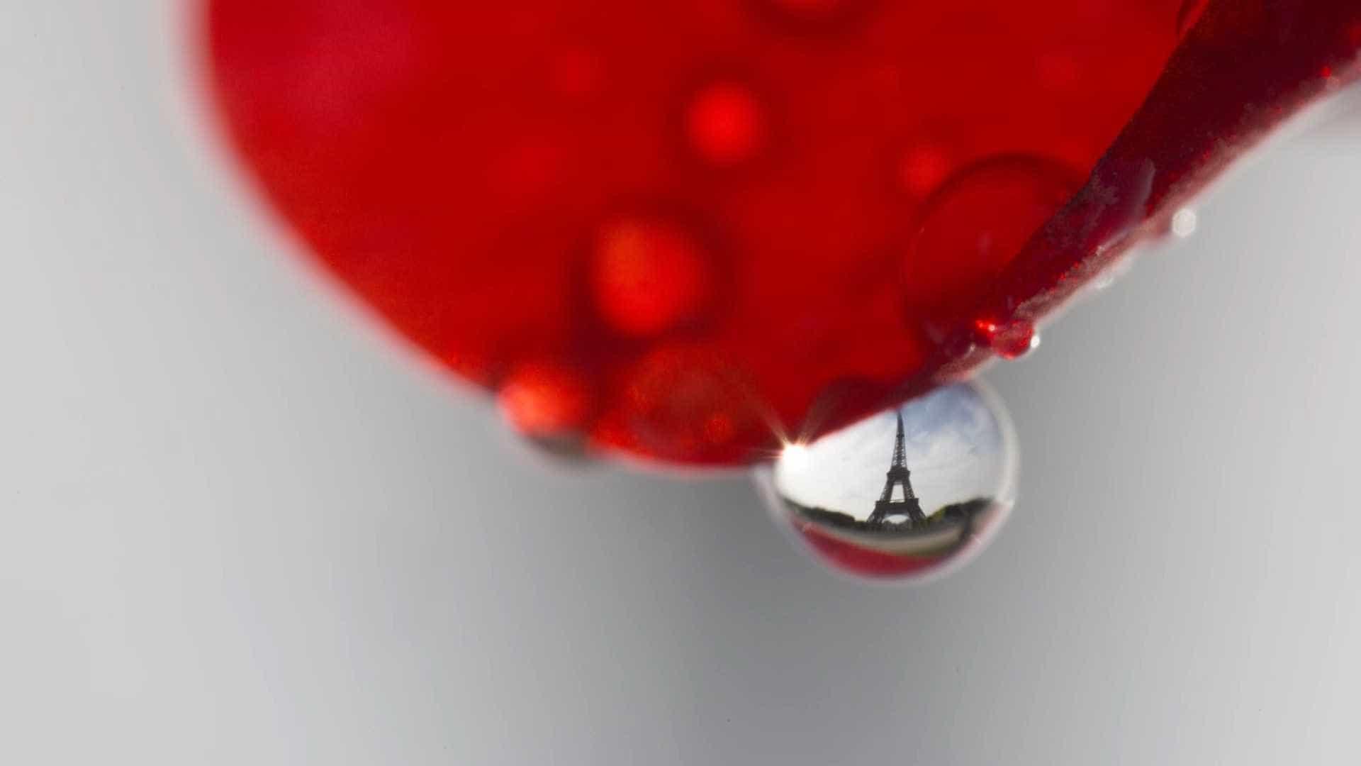 Fotógrafo registra monumentos de Paris vistos através de gotas de água