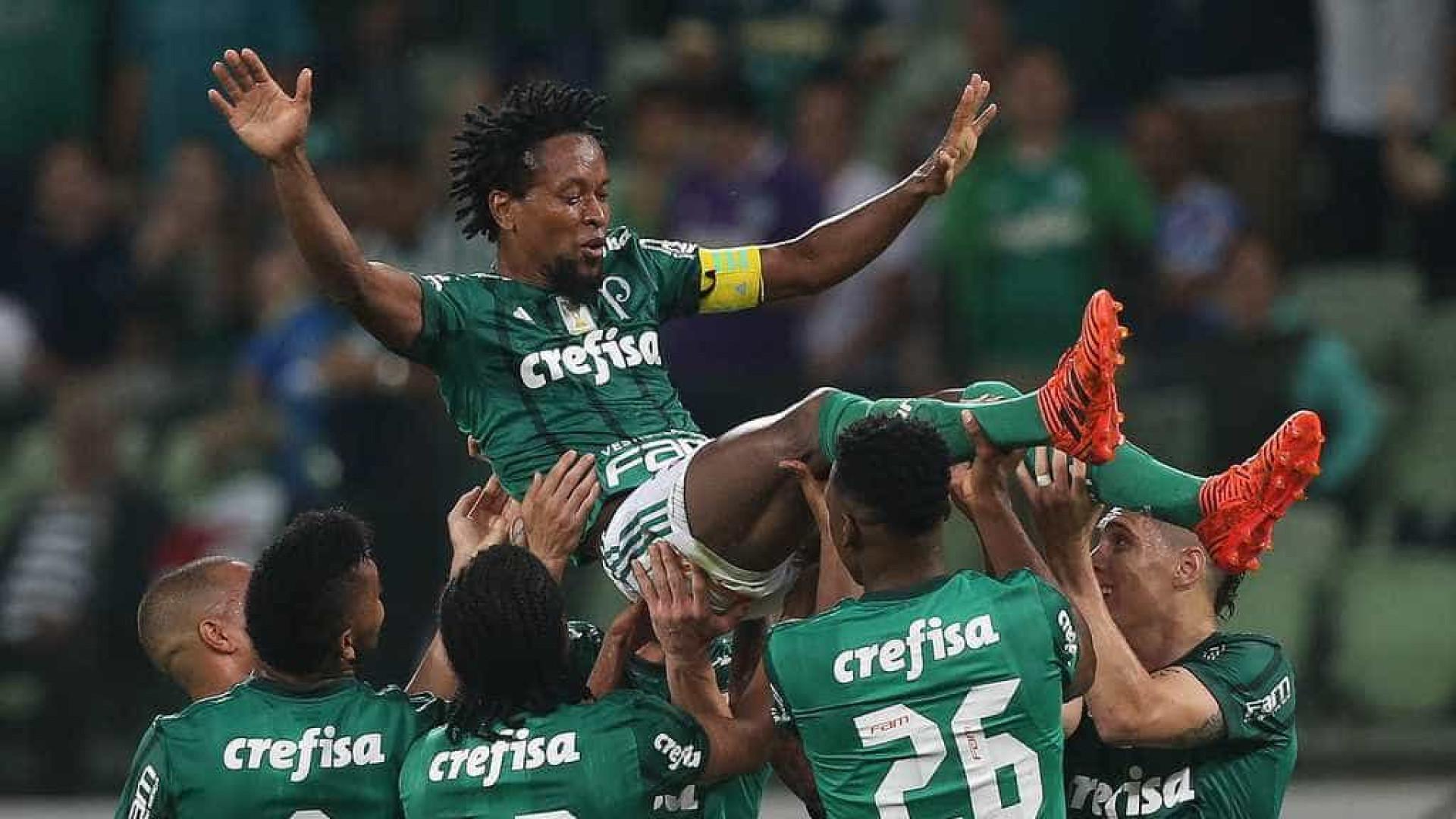 Palmeiras bate Botafogo em dia de homenagens a Zé Roberto