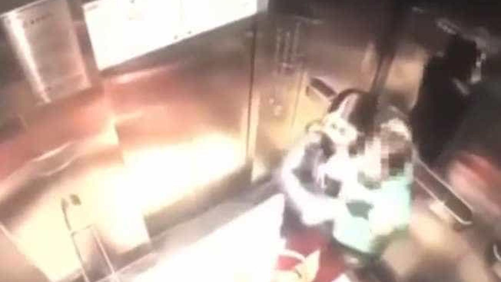 Babá é filmada ao agredir criança com socos no estômago; vídeo vaza