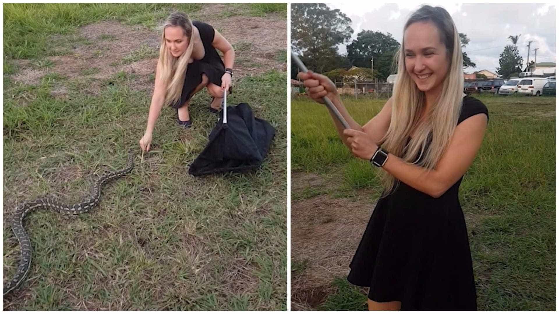 Mulher captura cobra com as próprias mãos na Austrália