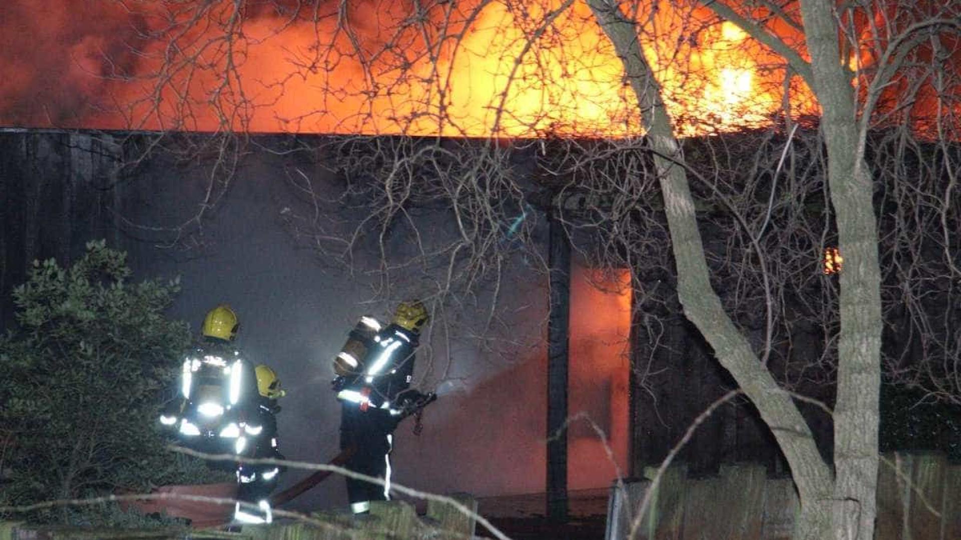Incêndio em zoológico de Londres termina com animal morto e 4 desaparecidos
