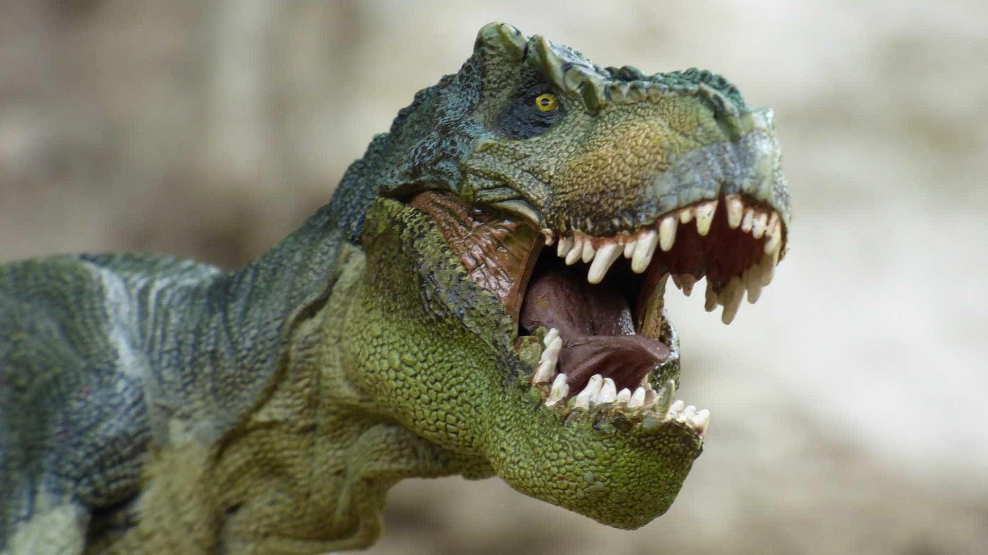 Assustador? Cientistas revelam como o Tiranossauro Rex realmente era