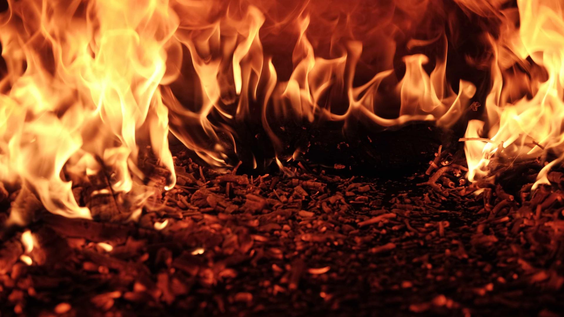 Incêndio atinge galpão da escola de samba em São Paulo