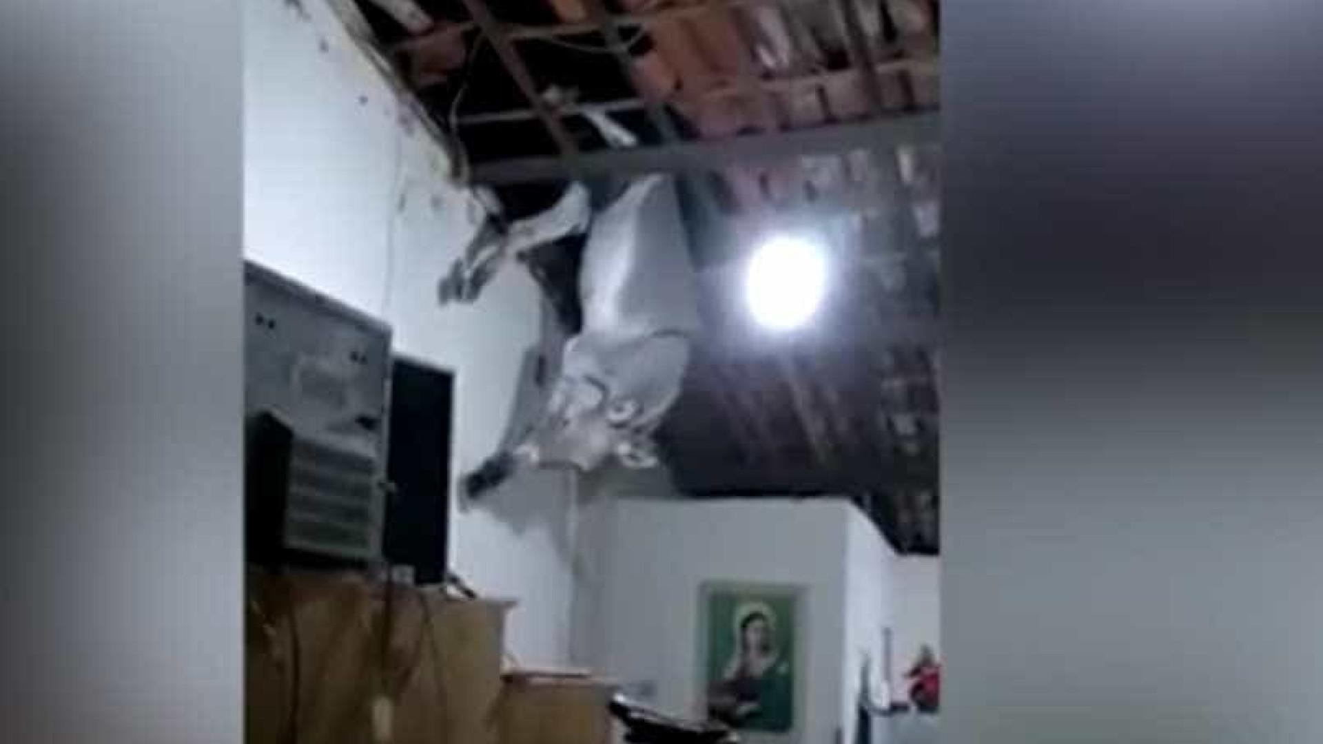 Jumento cai em cozinha após subir no telhado