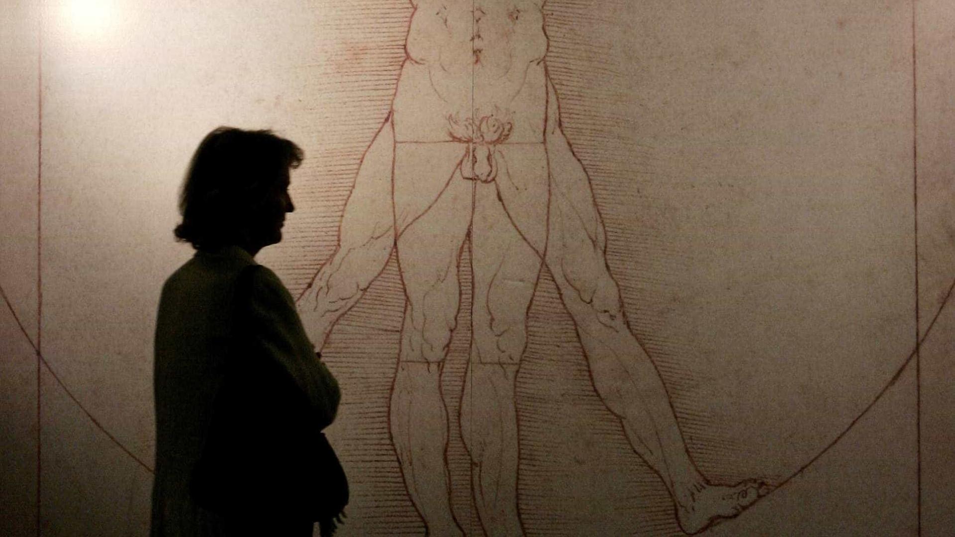 Da Vinci pode ter criado 'Homem Vitruviano' em equipe