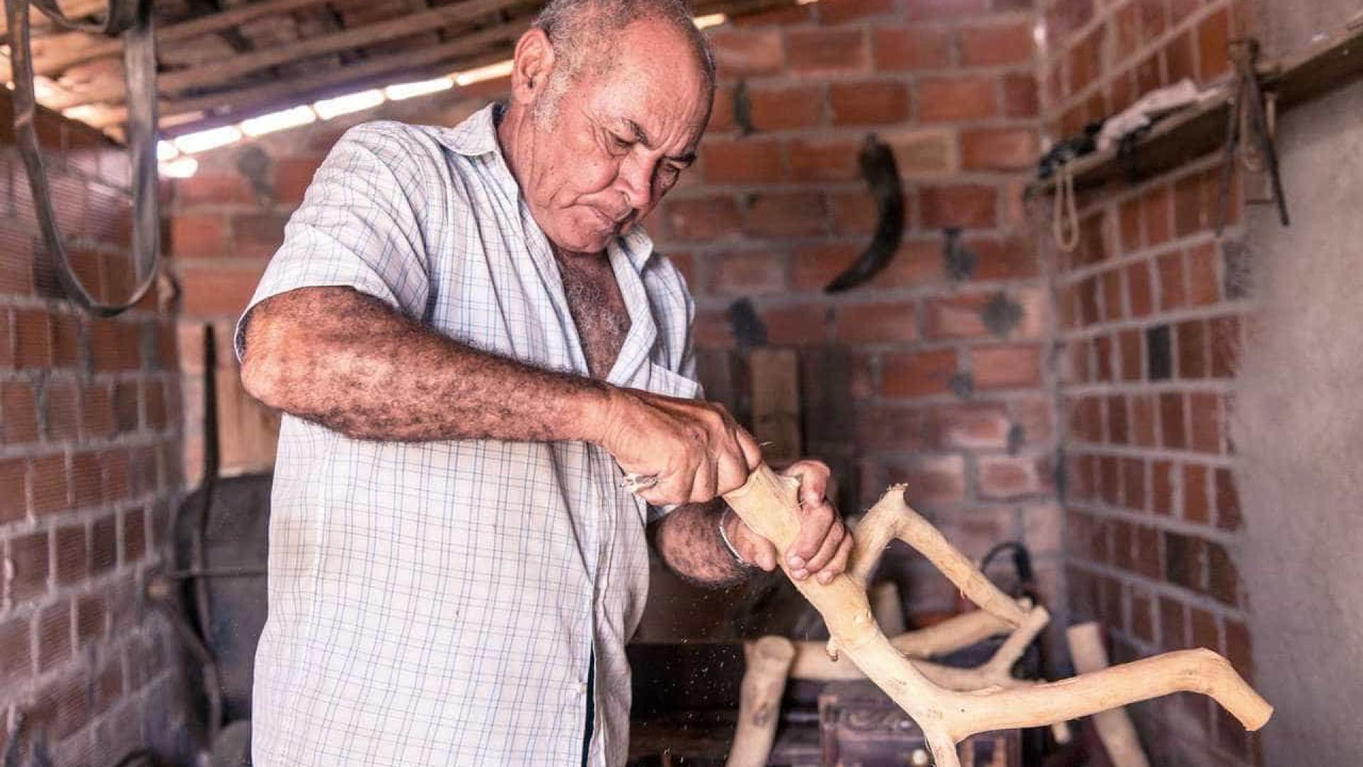 Exposição em SP reúne 270 peças do escultor sergipano Véio