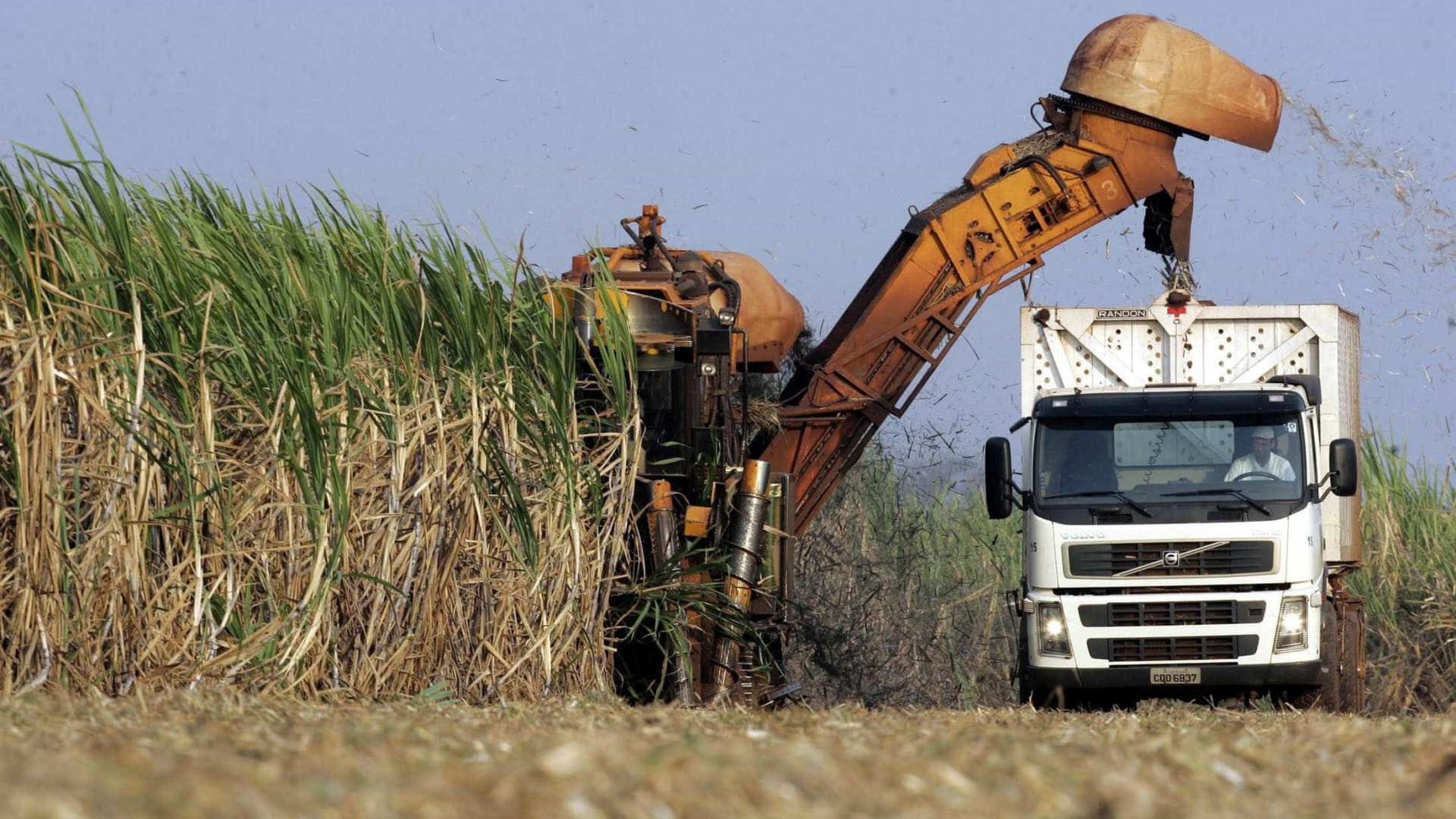 Justiça derruba acordo que proibia terceirização em usinas de cana