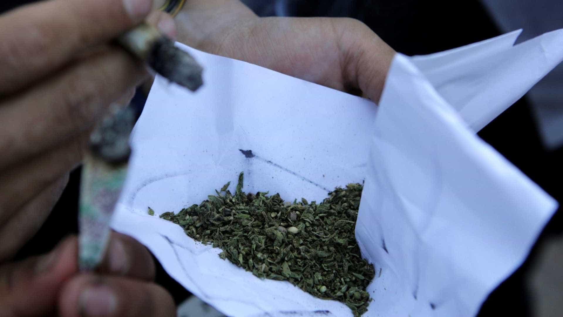Polícia Rodoviária apreende 1 tonelada de maconha no Paraná