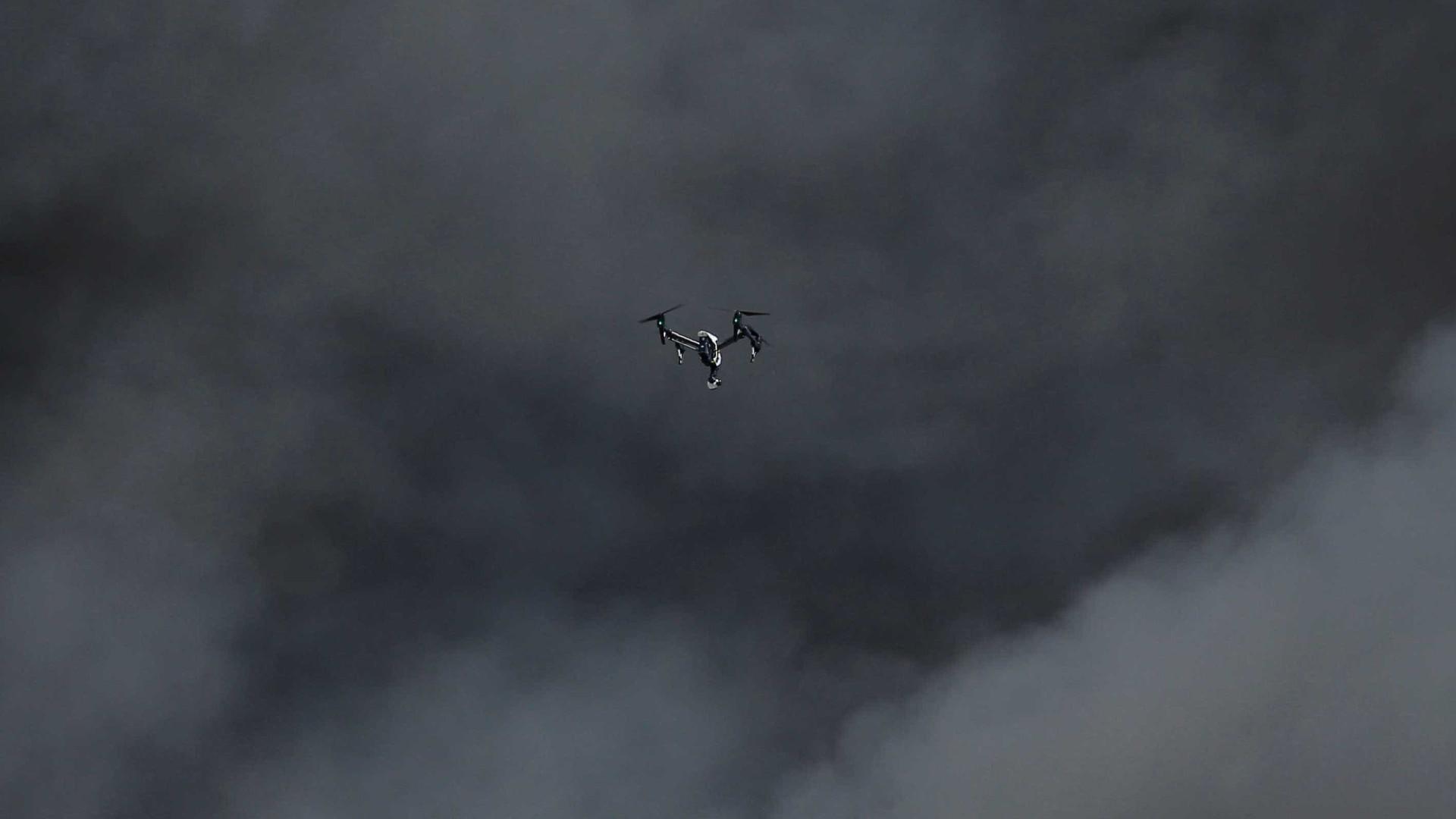 Fogo destrói mais de 2 mil hectares de floresta em Sidney