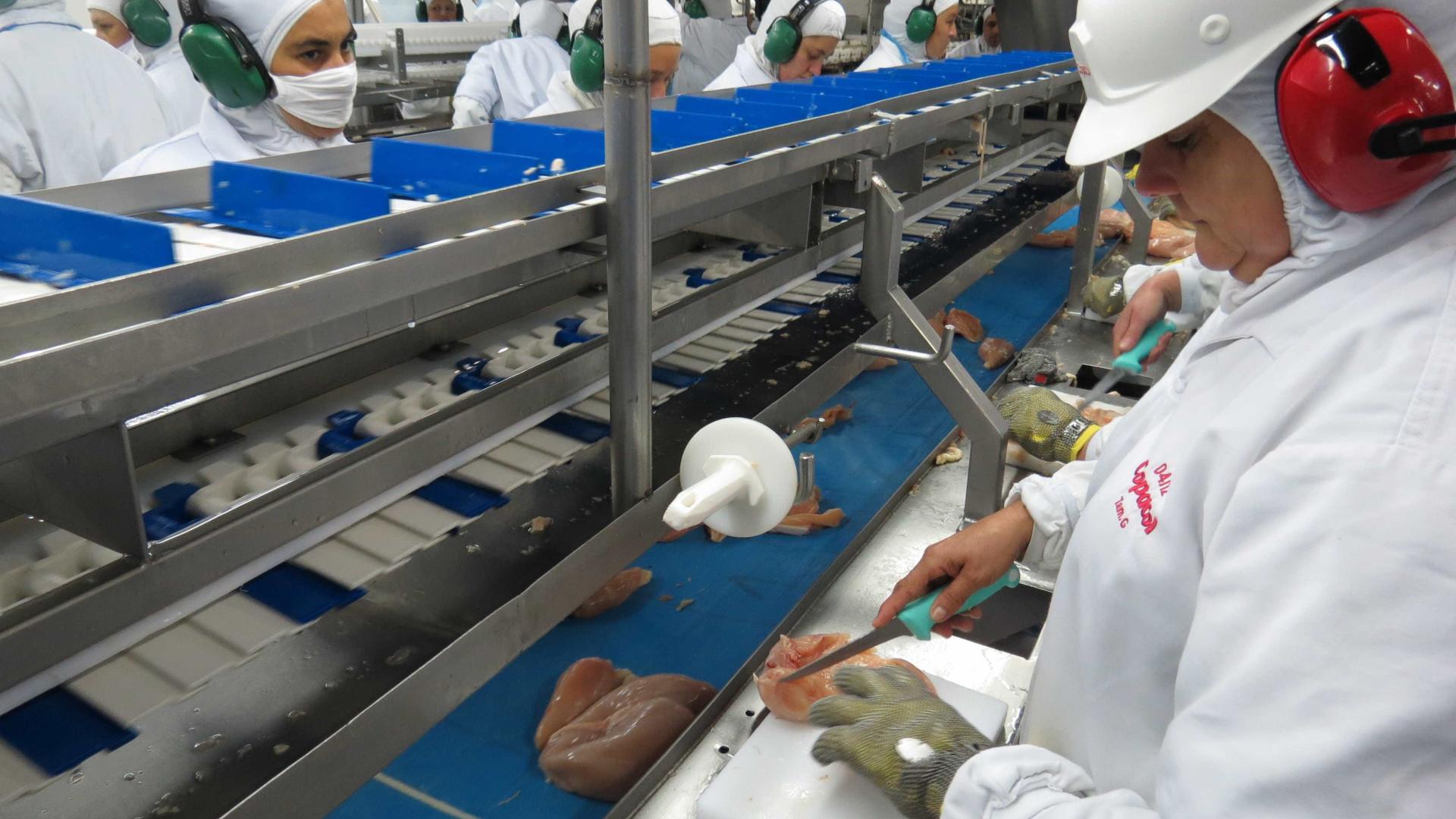 União Europeia embarga 20 frigoríficos de frango do Brasil