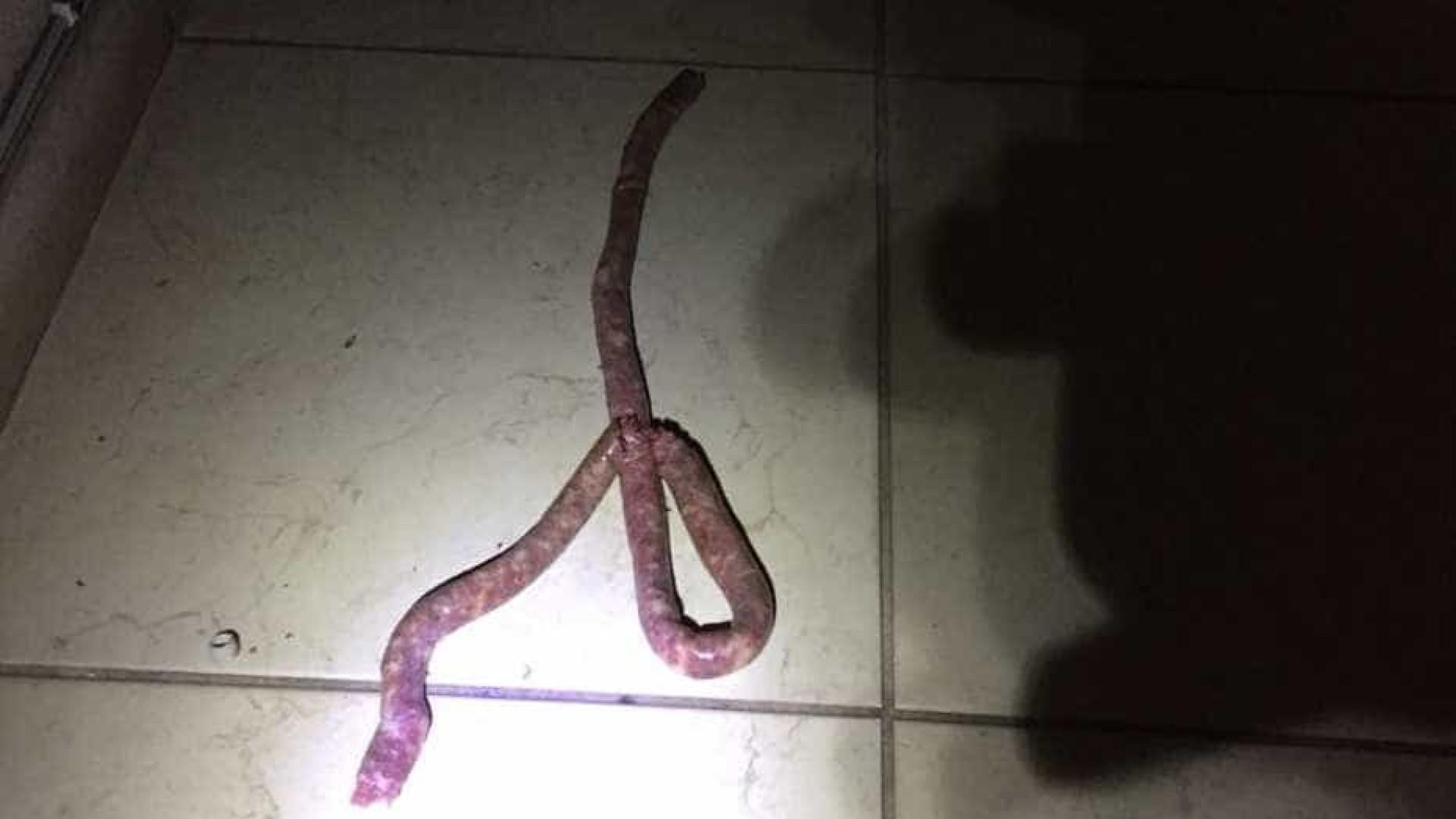 Mulher confunde linguiça com cobra e aciona Corpo de Bombeiros
