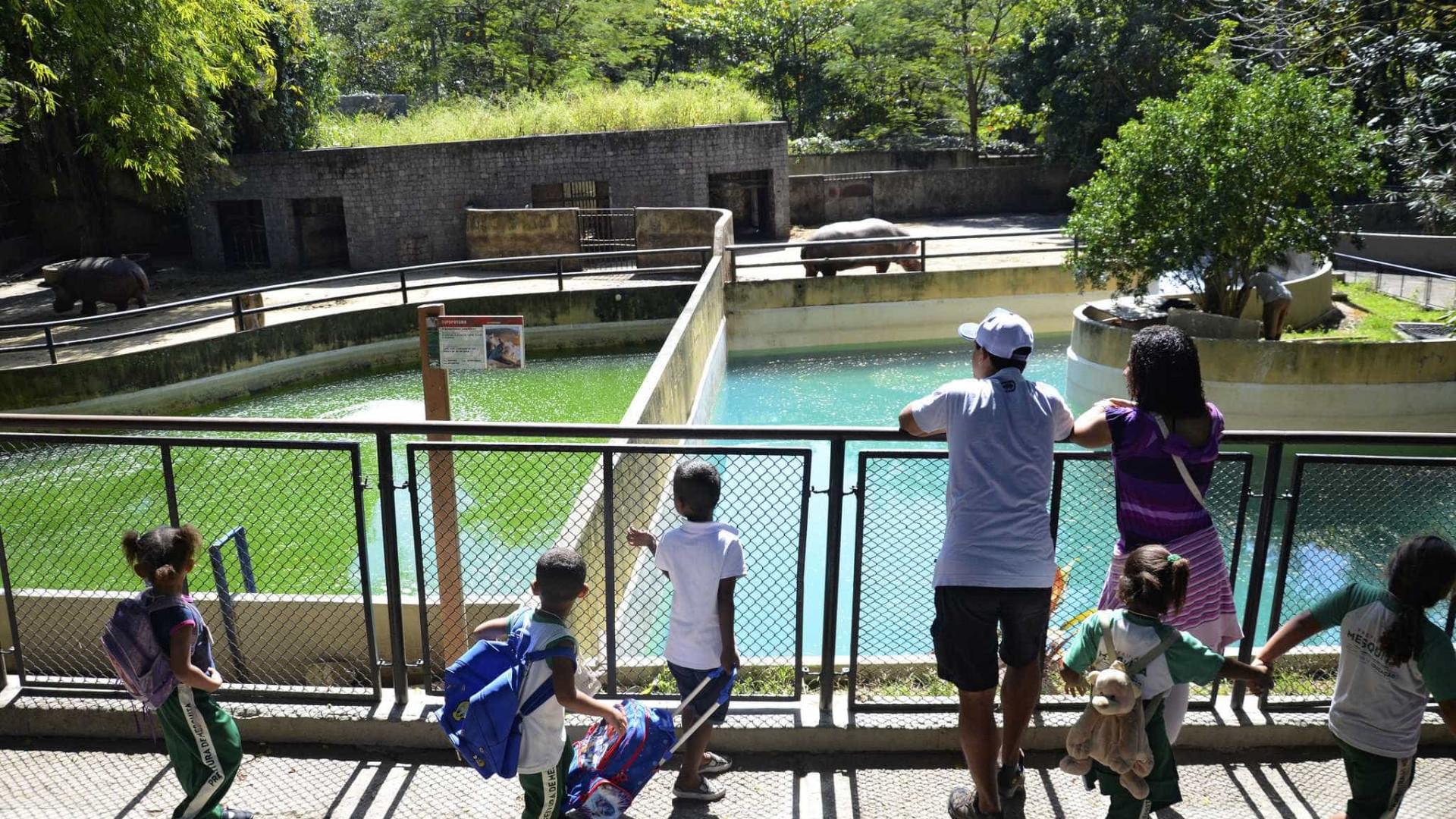 Em obras, zoológico do Rio funciona com horário reduzido
