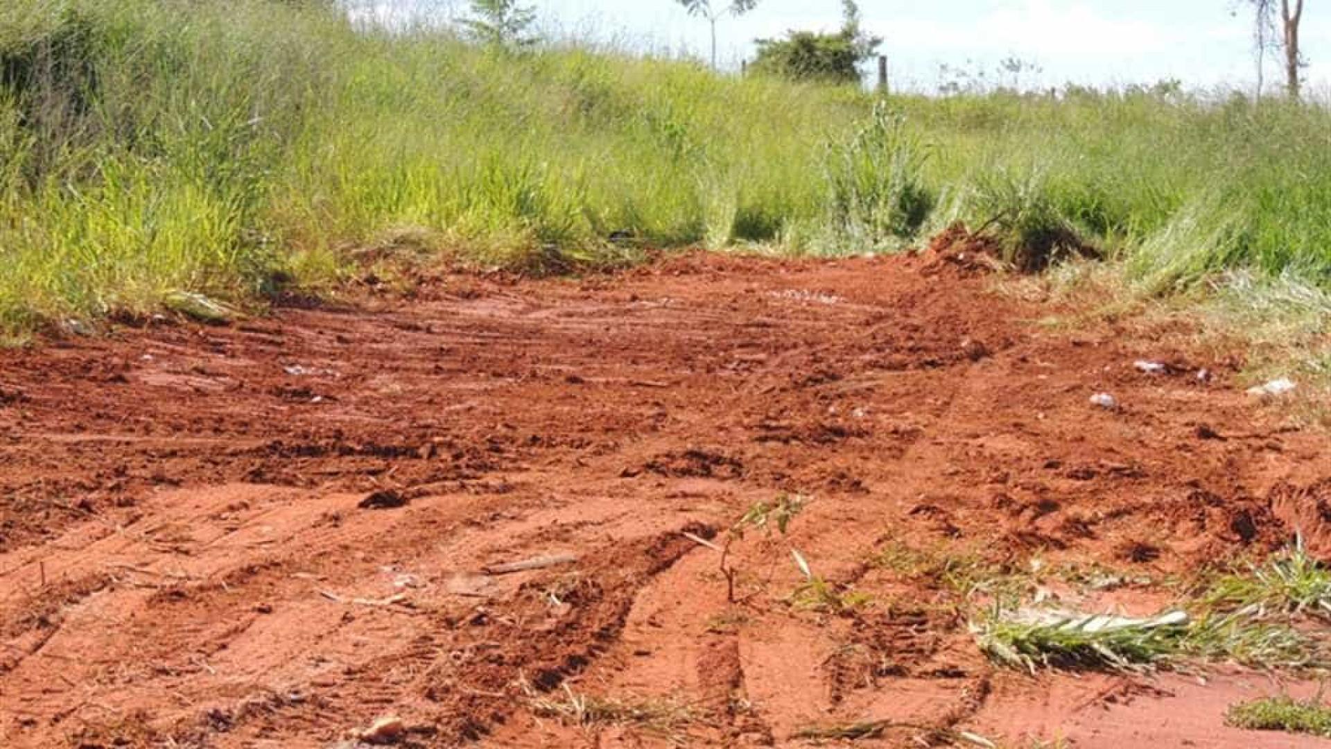 Ossada humana é encontrada em terreno baldio em Belém