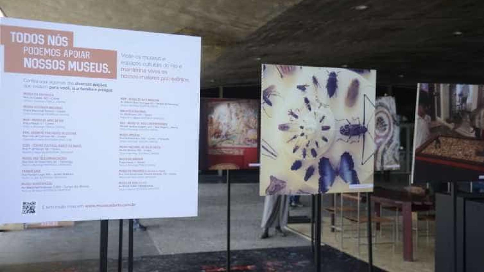 Instalação no MAM presta homenagem ao Museu Nacional
