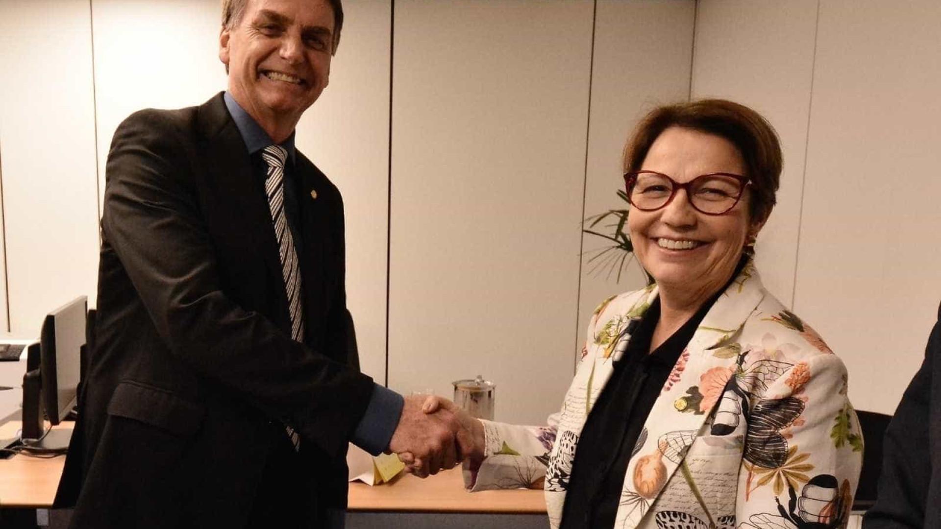 Futura ministra de Bolsonaro dará espaço para debate sobre agrotóxicos