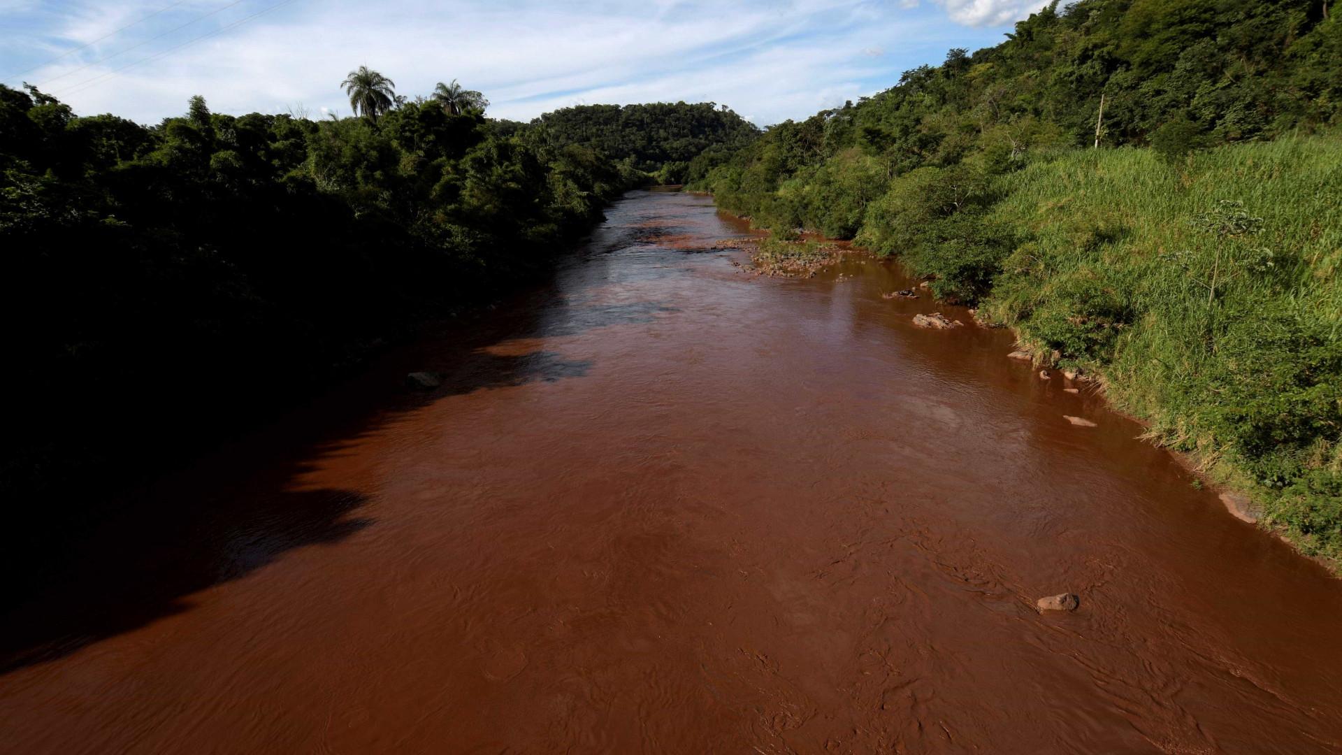 Rio Paraopeba está morto a 40 km da barreira rompida em Brumadinho