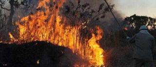 Aeronave faz pouso forçado e provoca incêndio em São José