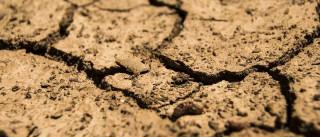 Ceará e Bahia têm 13 cidades  em situação de emergência