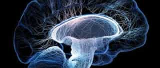 Epilepsia e nervo vago: 7 informações que você precisa saber