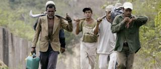 Ministério divulga 'lista suja' do trabalho escravo