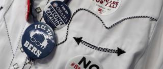 'Freiras maconheiras' levam apoio a Sanders à convenção democrata