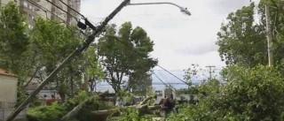 Ciclone deixa quase 50 mil pessoas  sem energia no RS