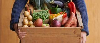 Saiba quais são os 20 alimentos saudáveis mais populares de 2017