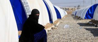 ONU: uma em cada cinco refugiadas sofreu violência de gênero