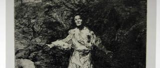 São Paulo recebe mostra 'Loucuras  Anunciadas' com gravuras de Goya