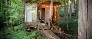 Local mais disputado do Airbnb, casa na árvore tem diárias a R$ 1 mil